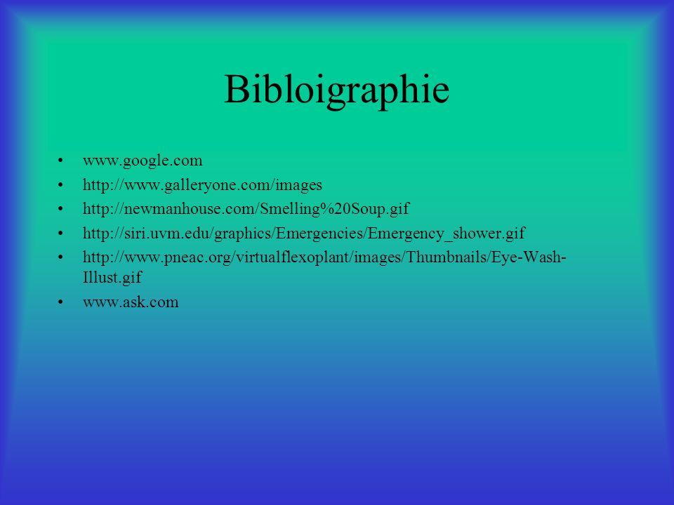 Bibloigraphie www.google.com http://www.galleryone.com/images