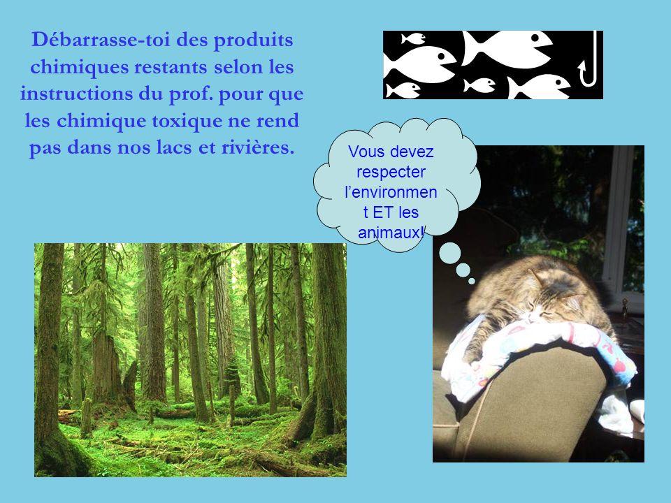 Vous devez respecter l'environment ET les animaux!