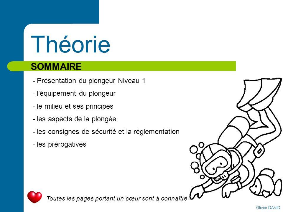 Théorie SOMMAIRE - Présentation du plongeur Niveau 1