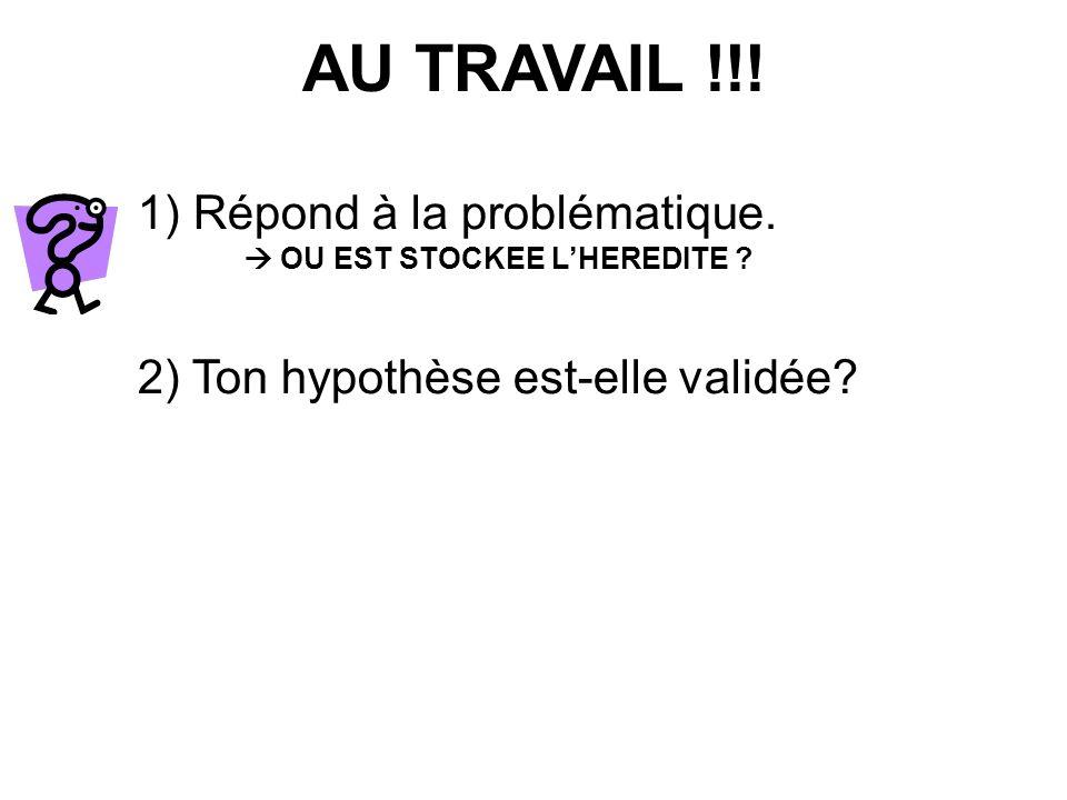 AU TRAVAIL !!! 1) Répond à la problématique.