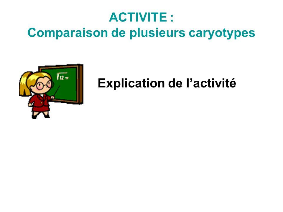 Comparaison de plusieurs caryotypes