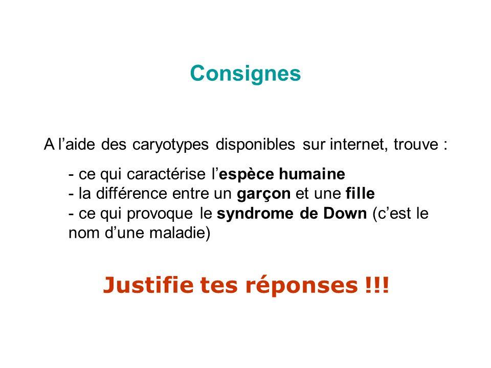 Consignes Justifie tes réponses !!!