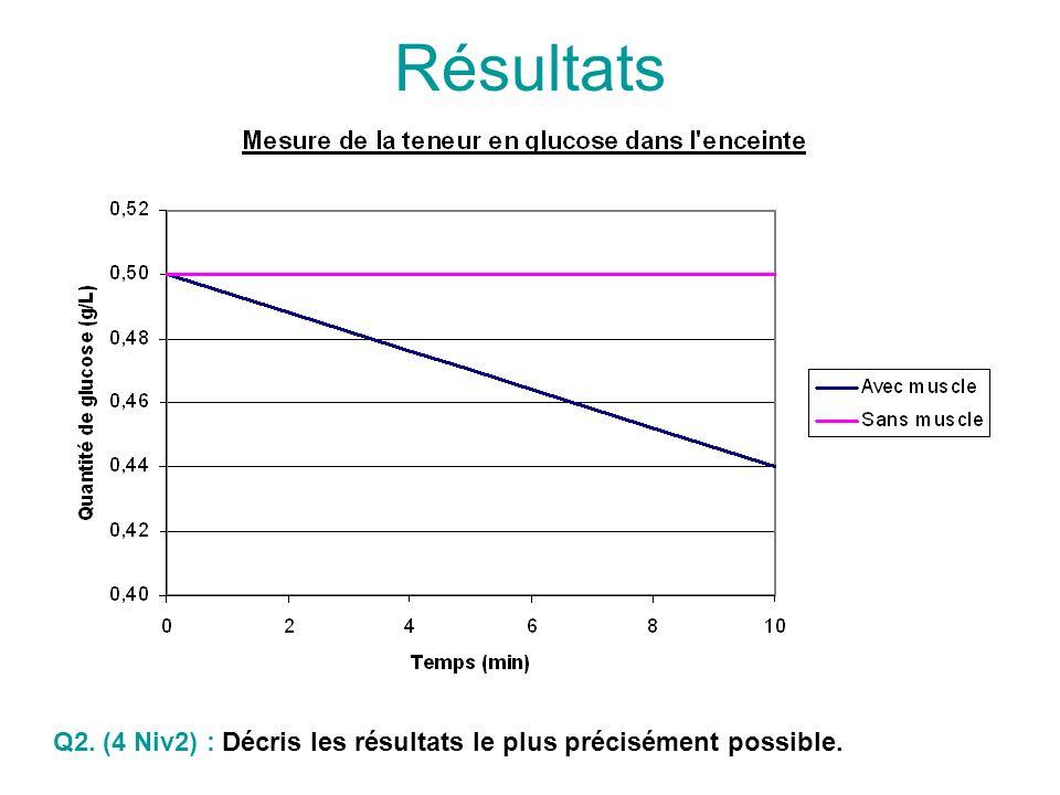 Résultats Q2. (4 Niv2) : Décris les résultats le plus précisément possible.