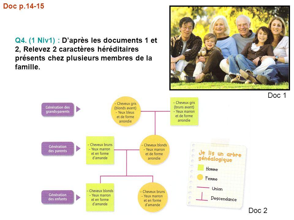 Doc p.14-15 Q4. (1 Niv1) : D'après les documents 1 et 2, Relevez 2 caractères héréditaires présents chez plusieurs membres de la famille.