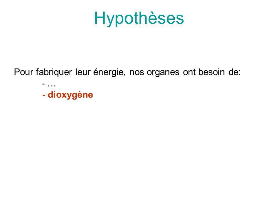 Hypothèses Pour fabriquer leur énergie, nos organes ont besoin de: - …