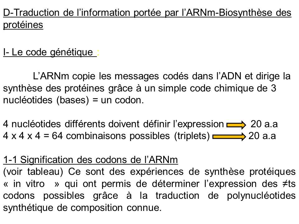 D-Traduction de l'information portée par l'ARNm-Biosynthèse des protéines