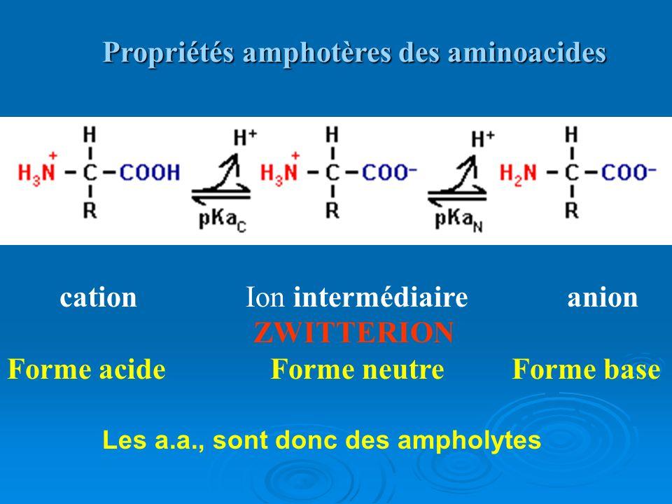 Propriétés amphotères des aminoacides