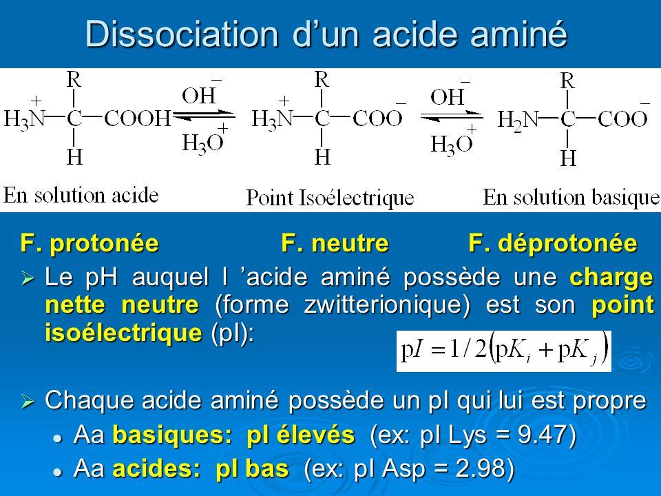 Dissociation d'un acide aminé