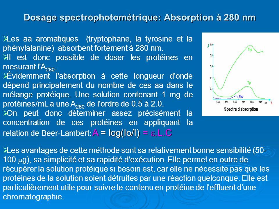 Dosage spectrophotométrique: Absorption à 280 nm