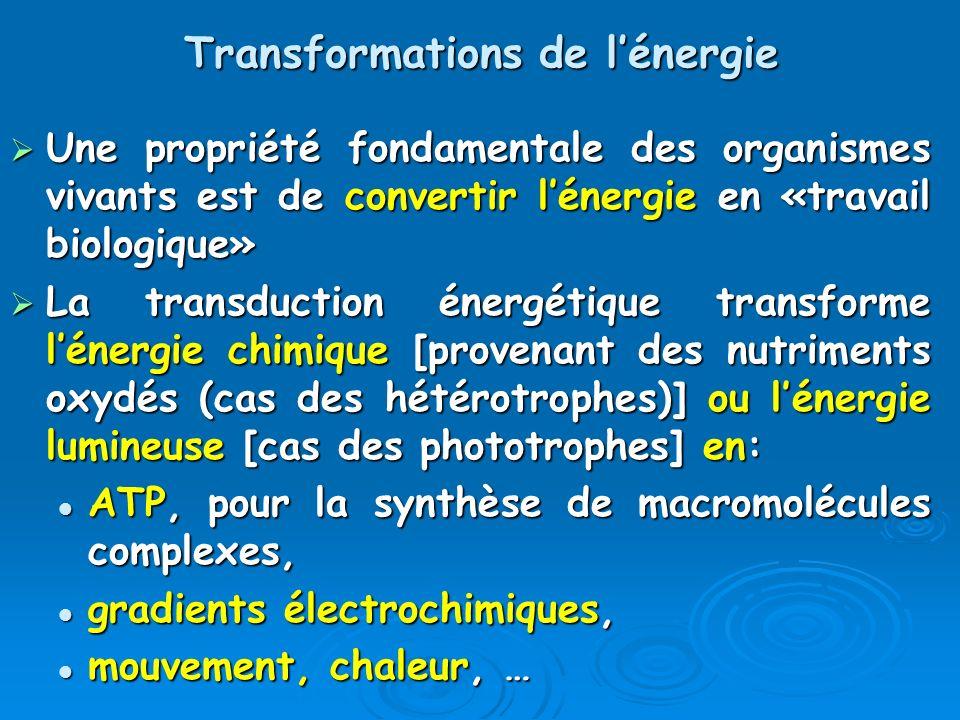 Transformations de l'énergie