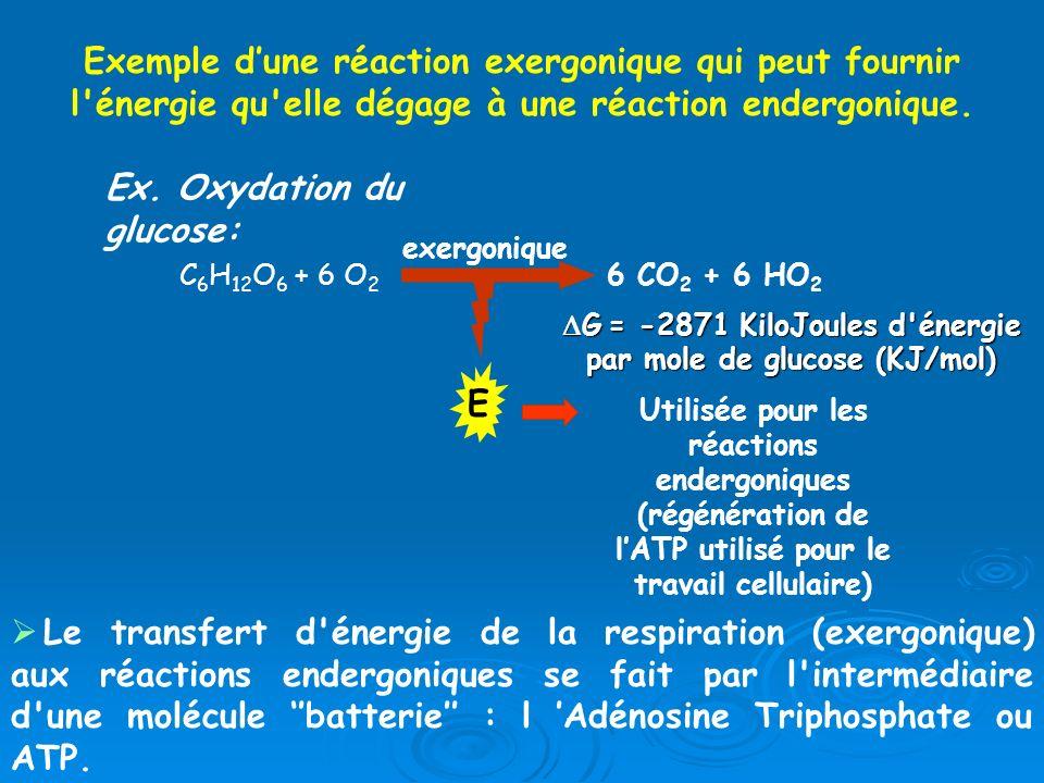 DG = -2871 KiloJoules d énergie par mole de glucose (KJ/mol)