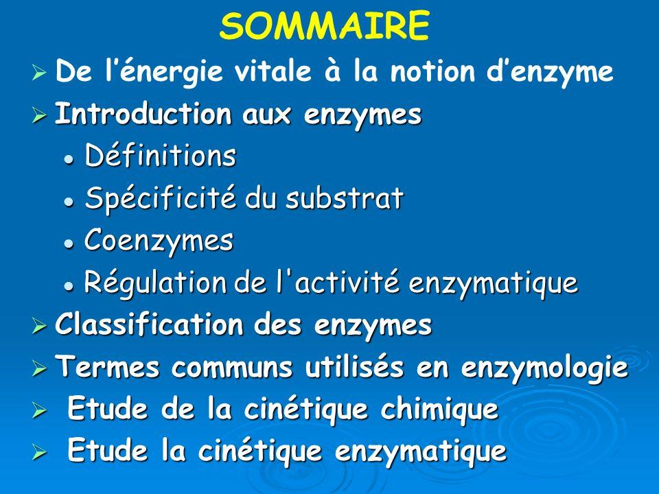 SOMMAIRE De l'énergie vitale à la notion d'enzyme