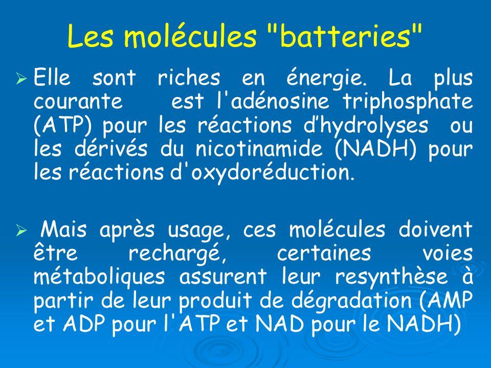 Les molécules batteries