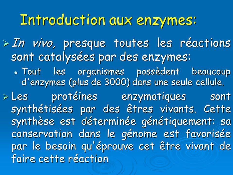 Introduction aux enzymes: