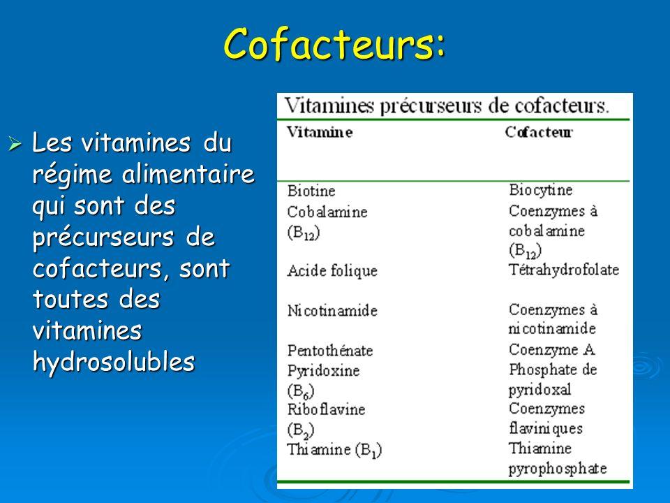 Cofacteurs:Les vitamines du régime alimentaire qui sont des précurseurs de cofacteurs, sont toutes des vitamines hydrosolubles.