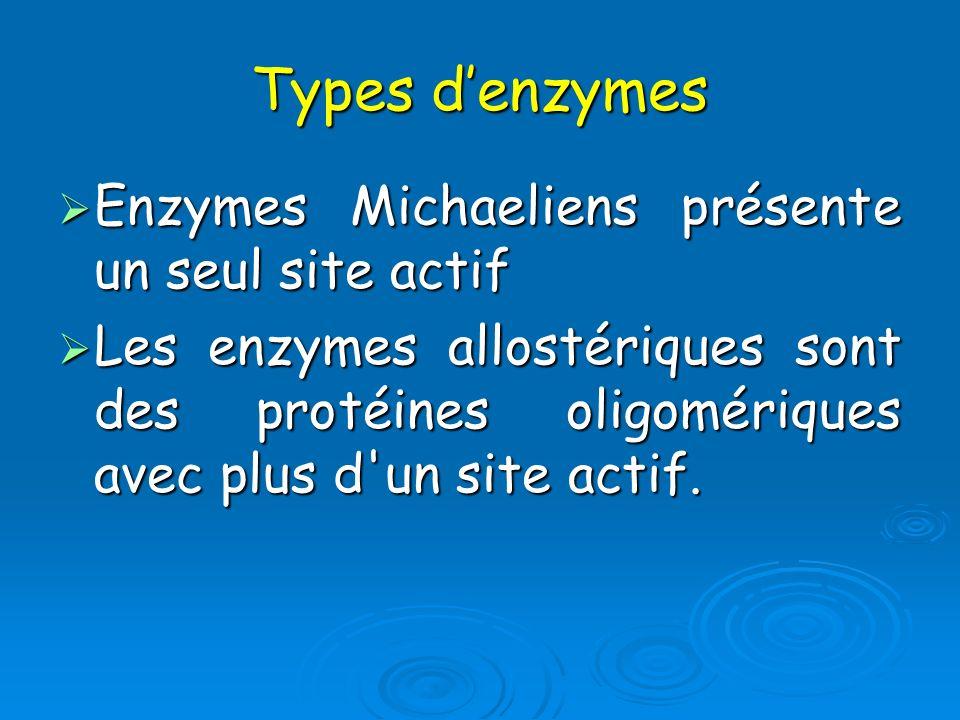 Types d'enzymes Enzymes Michaeliens présente un seul site actif