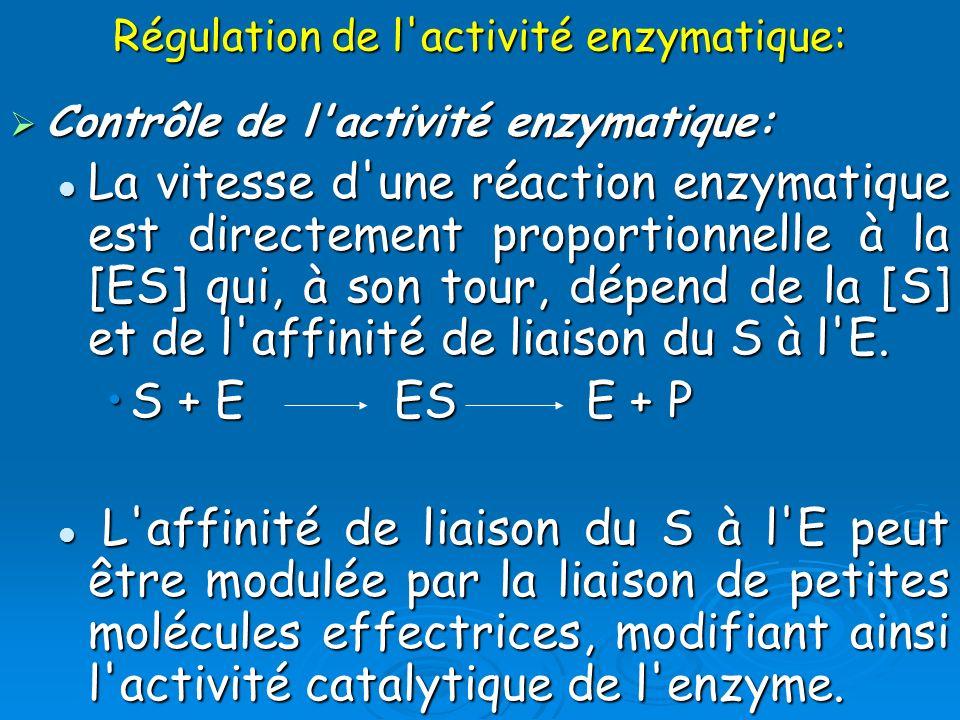 Régulation de l activité enzymatique: