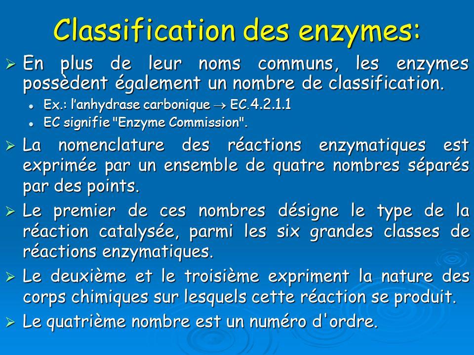 Classification des enzymes: