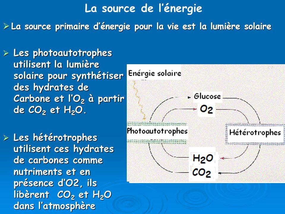 La source de l'énergie La source primaire d'énergie pour la vie est la lumière solaire.