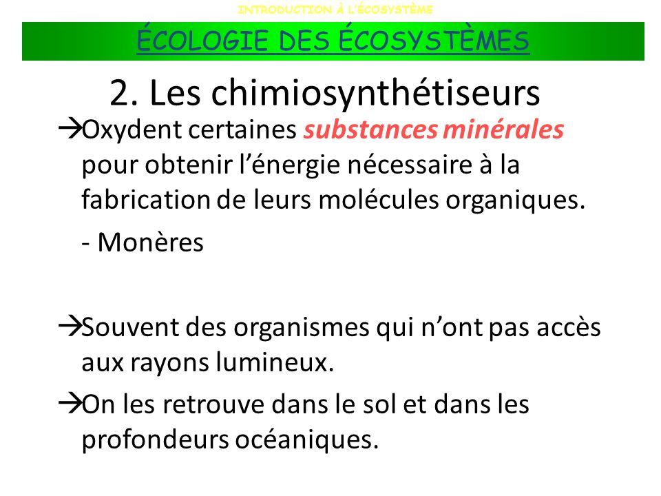 2. Les chimiosynthétiseurs