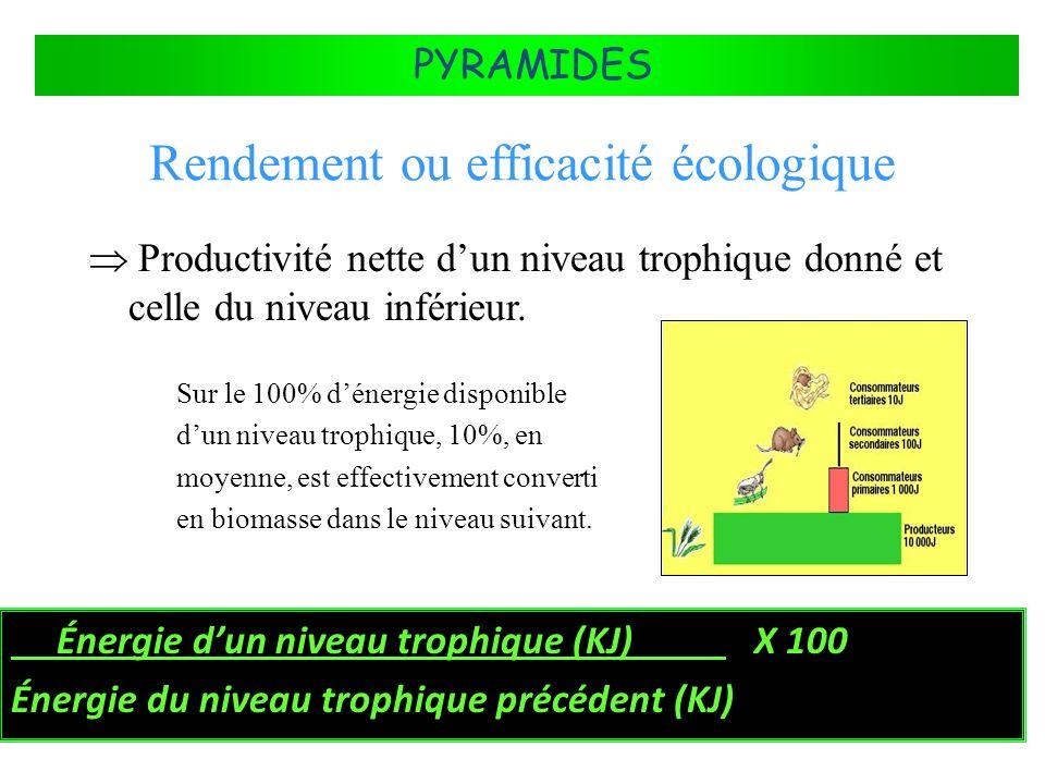 Rendement ou efficacité écologique