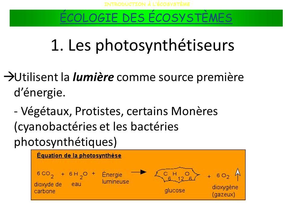 1. Les photosynthétiseurs