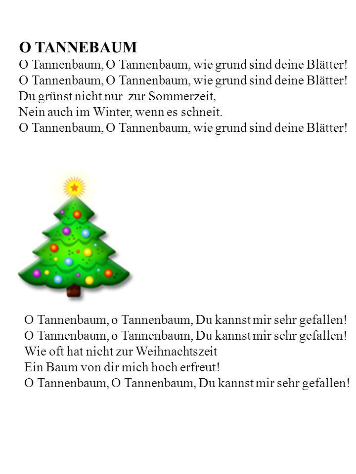 O TANNEBAUM O Tannenbaum, O Tannenbaum, wie grund sind deine Blätter!