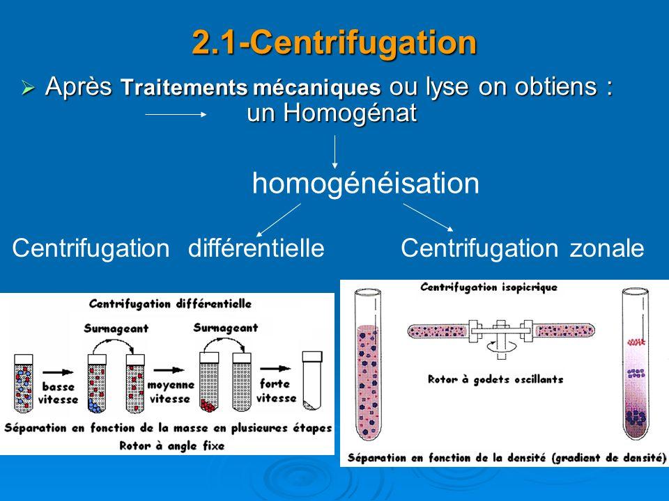2.1-Centrifugation homogénéisation