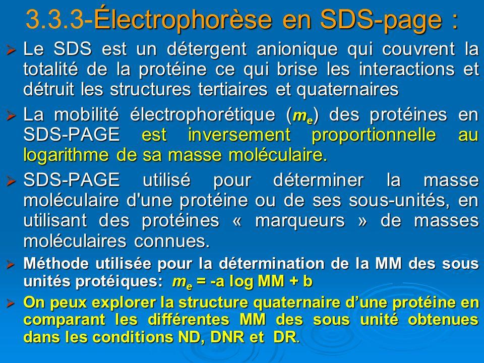 3.3.3-Électrophorèse en SDS-page :