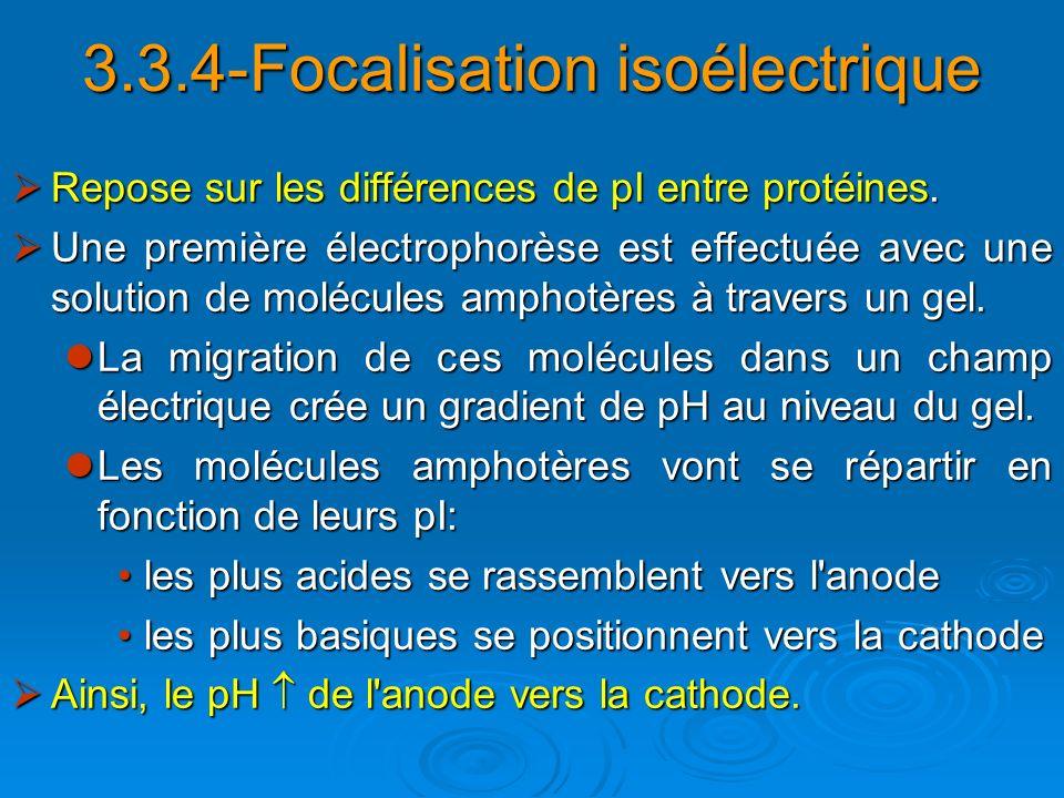 3.3.4-Focalisation isoélectrique