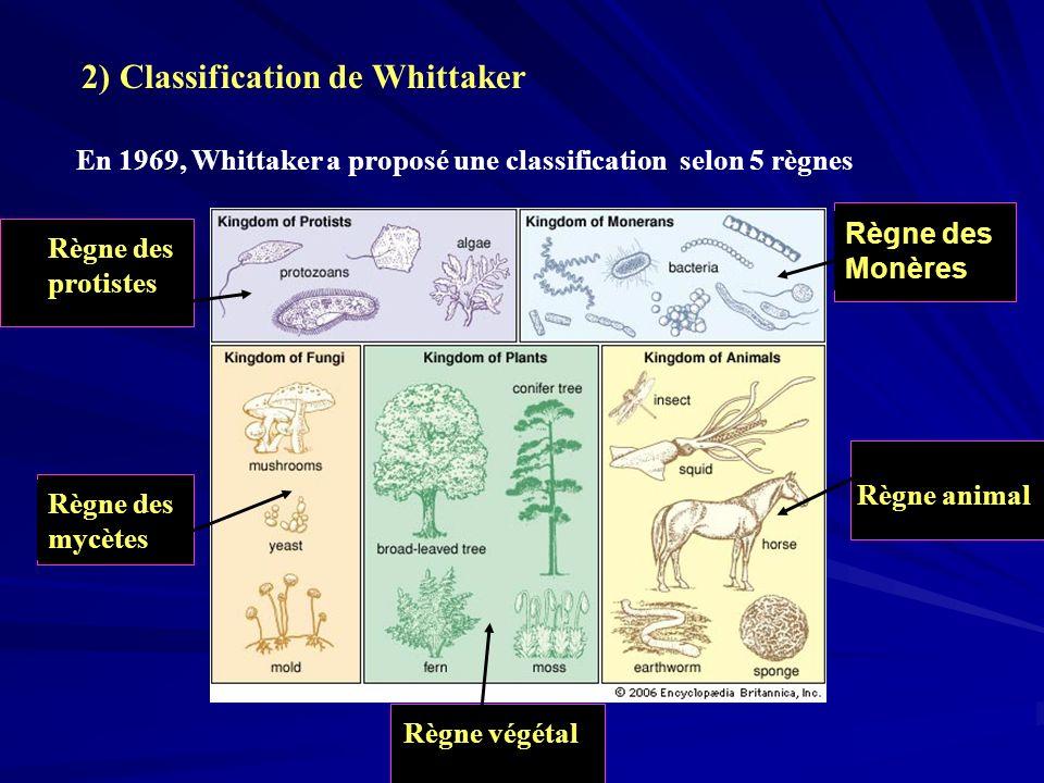 2) Classification de Whittaker