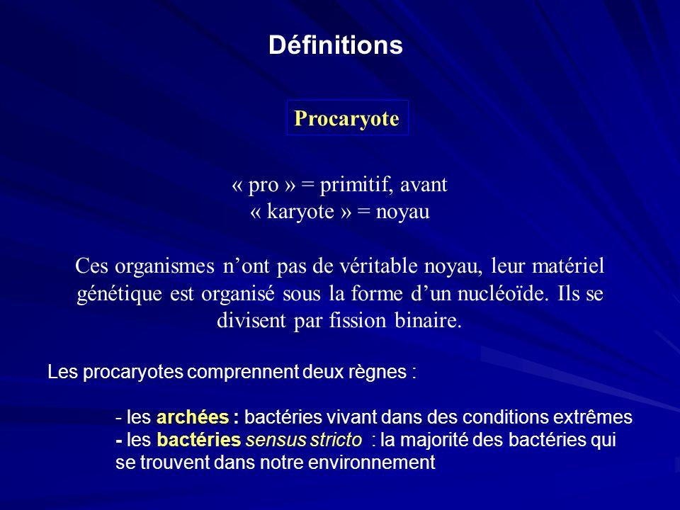 Définitions Procaryote « pro » = primitif, avant « karyote » = noyau