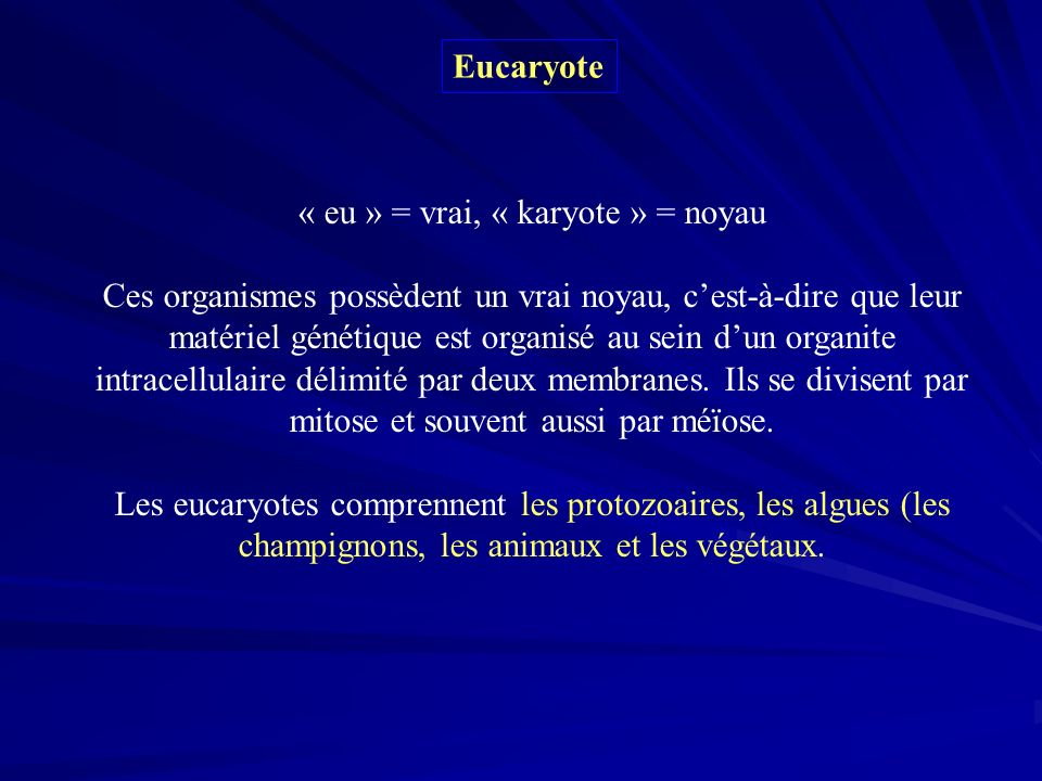 « eu » = vrai, « karyote » = noyau