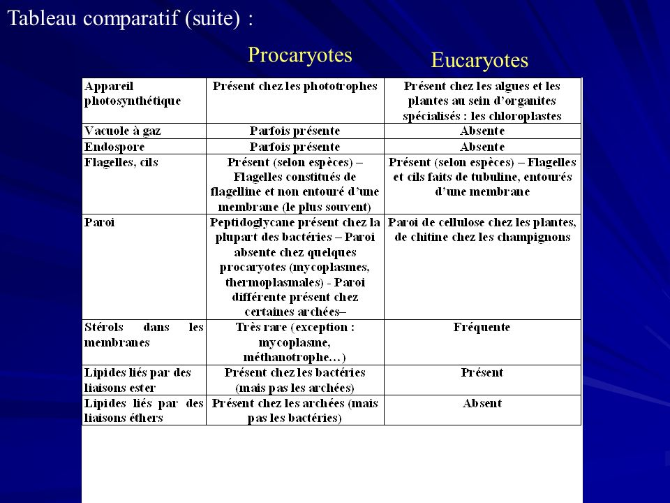Tableau comparatif (suite) :