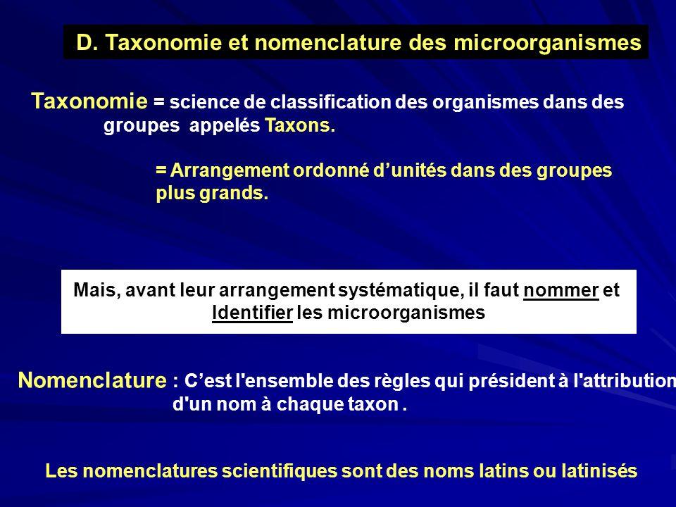 D. Taxonomie et nomenclature des microorganismes