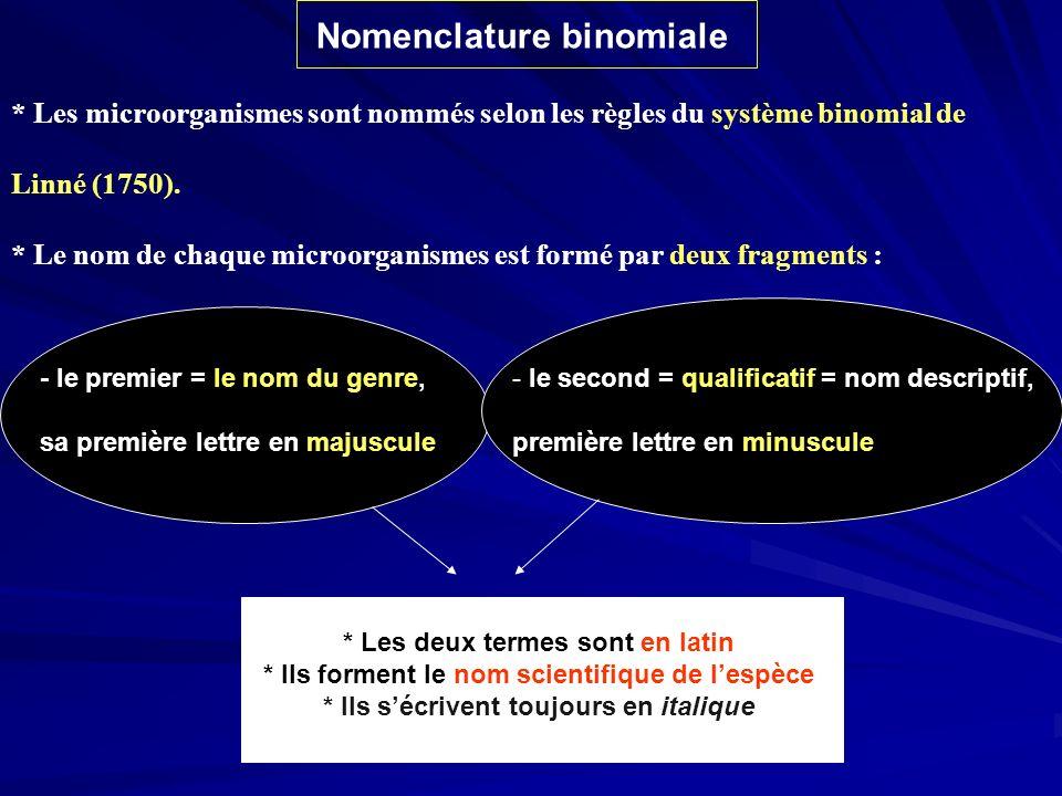 Nomenclature binomiale