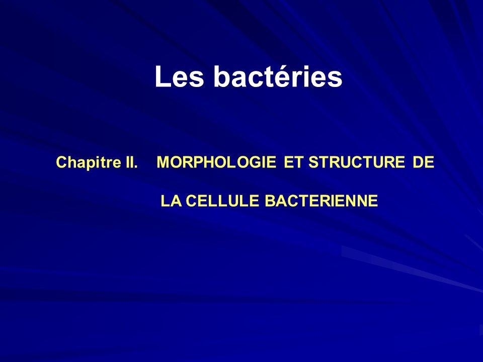 Chapitre II. MORPHOLOGIE ET STRUCTURE DE LA CELLULE BACTERIENNE