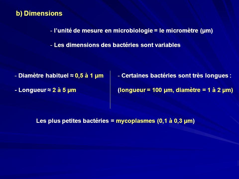 b) Dimensions l'unité de mesure en microbiologie = le micromètre (µm)