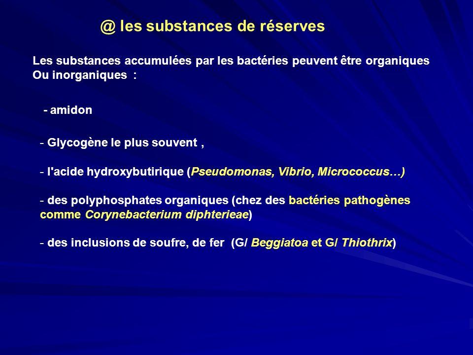@ les substances de réserves