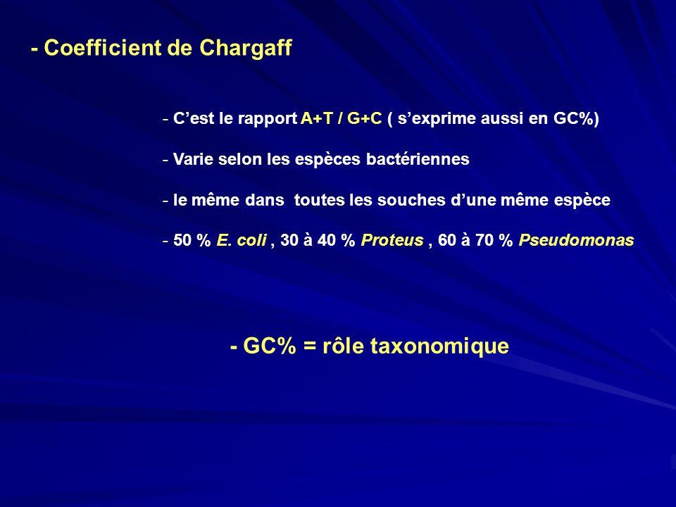 - Coefficient de Chargaff