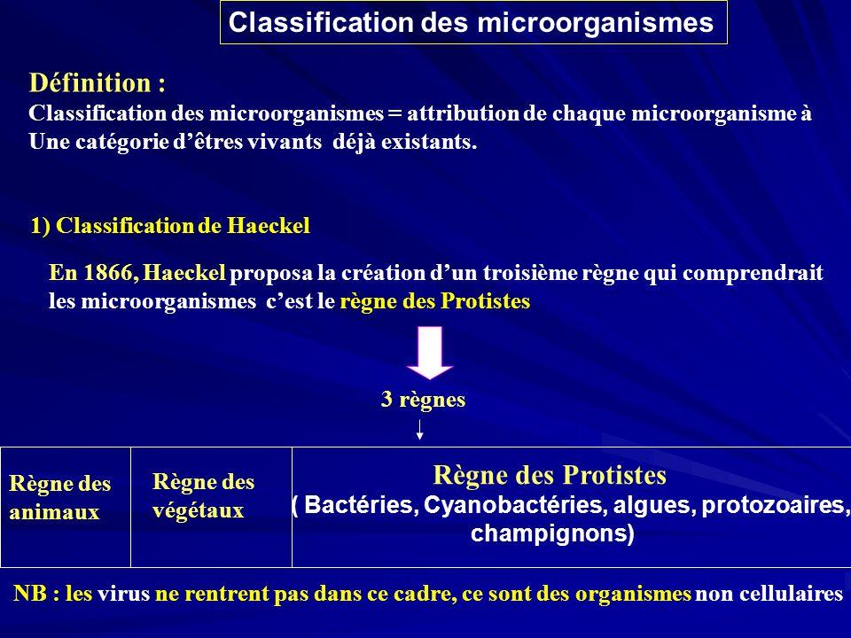 ( Bactéries, Cyanobactéries, algues, protozoaires,