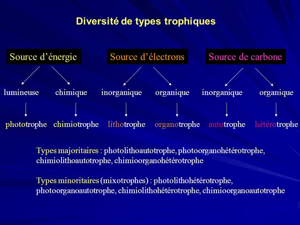 Diversité de types trophiques