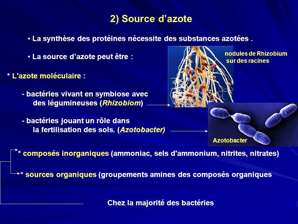 2) Source d'azote La synthèse des protéines nécessite des substances azotées. La source d'azote peut être :