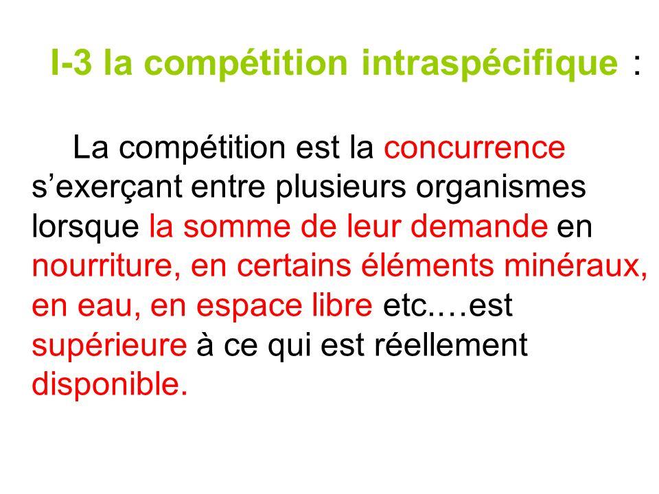 I-3 la compétition intraspécifique :