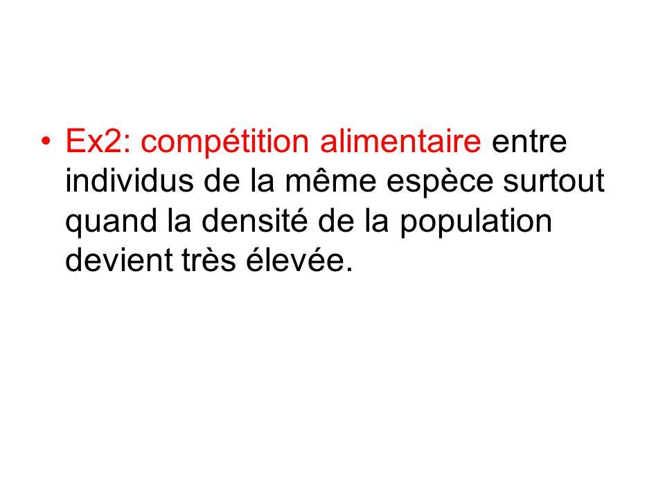 Ex2: compétition alimentaire entre individus de la même espèce surtout quand la densité de la population devient très élevée.
