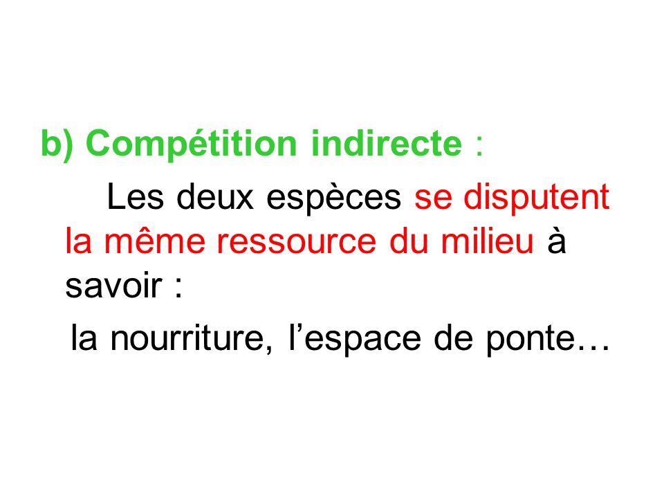 b) Compétition indirecte :