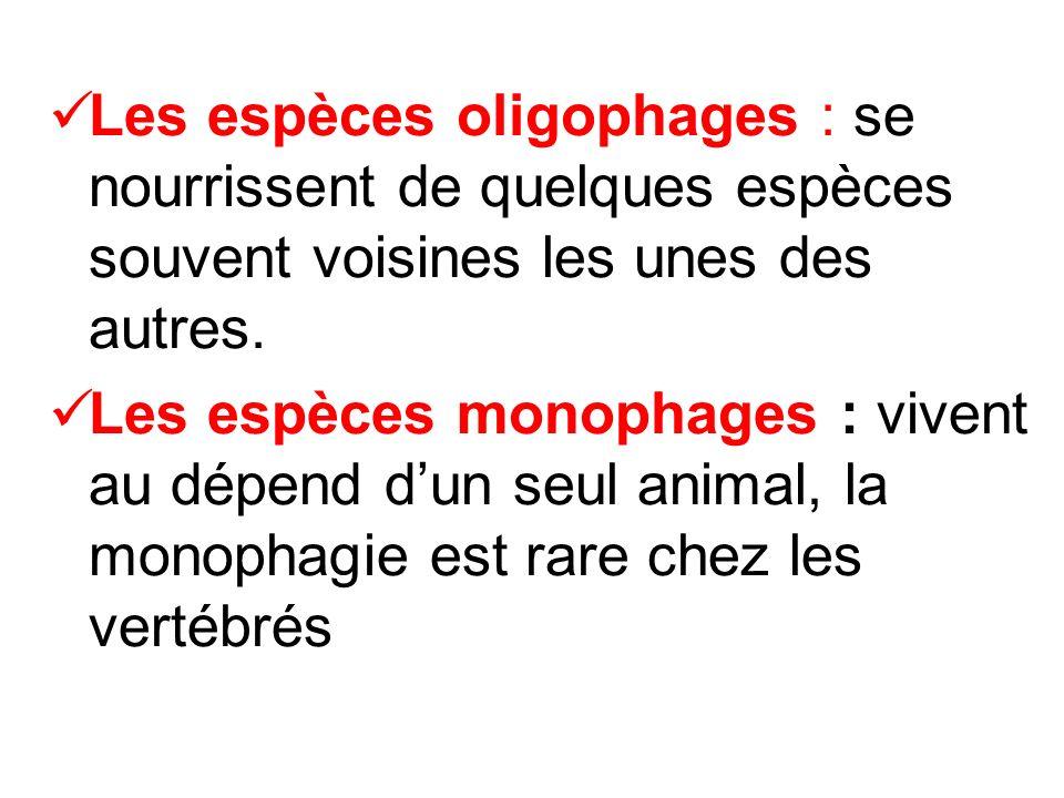 Les espèces oligophages : se nourrissent de quelques espèces souvent voisines les unes des autres.