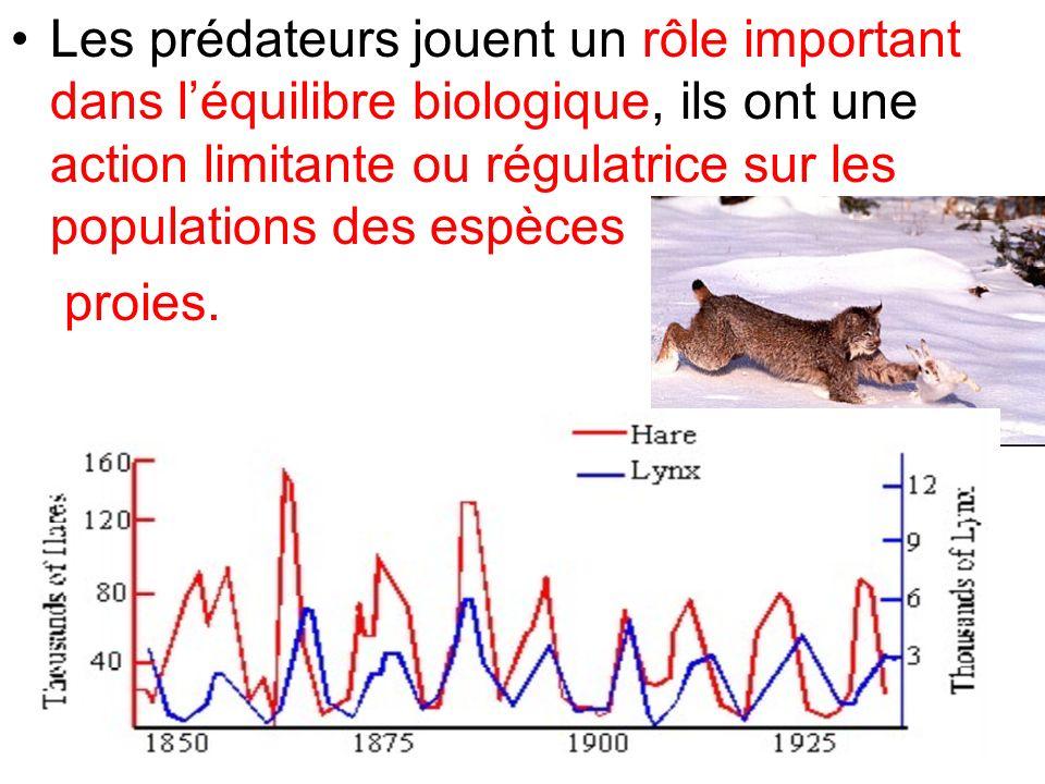 Les prédateurs jouent un rôle important dans l'équilibre biologique, ils ont une action limitante ou régulatrice sur les populations des espèces