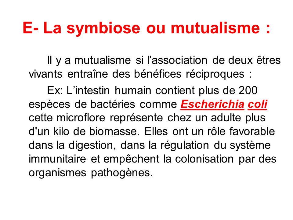 E- La symbiose ou mutualisme :