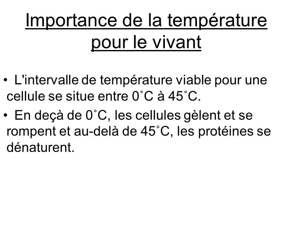 Importance de la température pour le vivant
